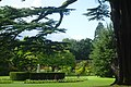 Cedar Garden and Sir Briggs Monument.jpg