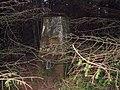 Cefn Cwm Irfon. - geograph.org.uk - 1571806.jpg