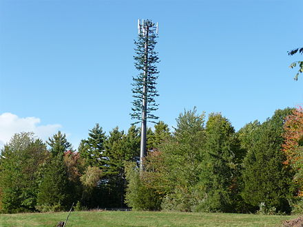 Cellular antenna disguised to look like a tree Cell phone tower disguised 2008.jpg