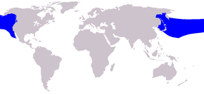 Description de l'image Cetacea range map Baird 27s Beaked Whale.png.