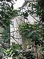 Château de Buffières (71) - 2.JPG
