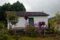 ChDiam-capelinha-VlPati2014-05-03.jpg