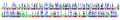 Chamerion angustifolium (6741783729).png