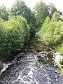 Channel in Berezinsky Biosphere Reserve.jpg