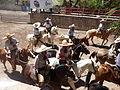 Charreada en El Sabinal, Salto de los Salado, Aguascalientes 06.JPG