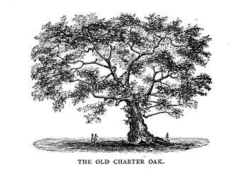 History of Connecticut - The Charter Oak in Hartford