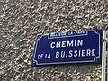 Chemin de la Buissière.JPG