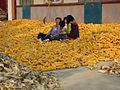 Children in rural Shandong.jpg