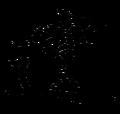 Chinese Character zhao1 cai2 jin4 bao3.png