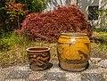 Chinese stenen potten voor Japanse esdoorn (Acer palmatum). Locatie, Chinese tuin Het Verborgen Rijk van Ming in de Hortus Haren 02.jpg