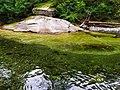 Chistovodnoe river.jpg