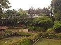 Cideres, Sukamenak, Sukaresik, Tasikmalaya, Jawa Barat, Indonesia - panoramio (6).jpg