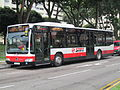 Citaro-811.jpg