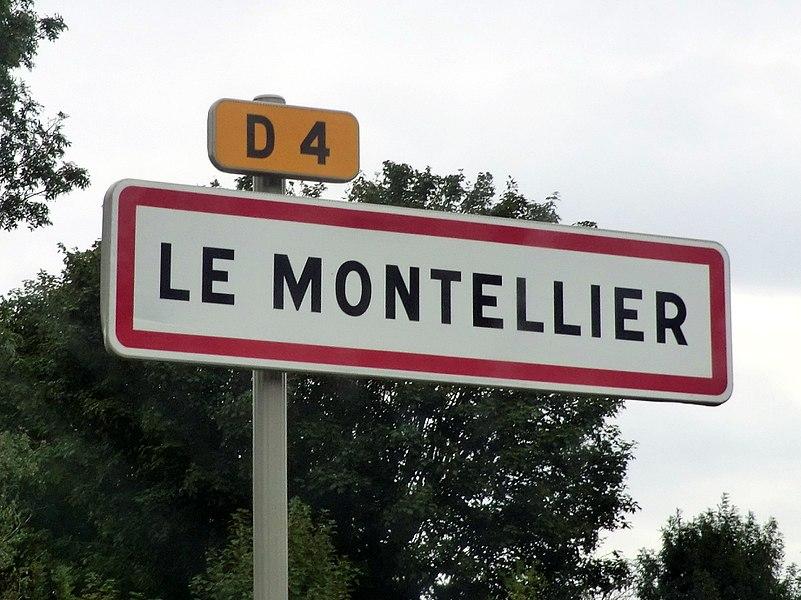 City limit sign of Le Montellier.