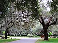Clearwater,Florida,USA. - panoramio (106).jpg