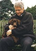 Buddy Dog Wikipedia - Wikipedia bill clinton