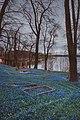Cmentarz w Sztumie,widok na jezioro Barlewickie.jpg
