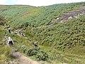 Coldstone Beck, Burley Moor - geograph.org.uk - 528898.jpg