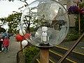 Compact fluorescent in big globe (4757162166).jpg