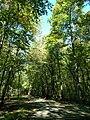 Conemaugh Gap Early Fall 2016 - panoramio - Ron Shawley (18).jpg