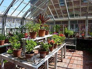 Sunnycroft - Image: Conservatory Interior
