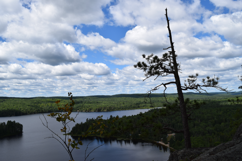 File:Coon Lake with tree in foreground.png