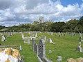 Corfe Castle - panoramio - PJMarriott.jpg