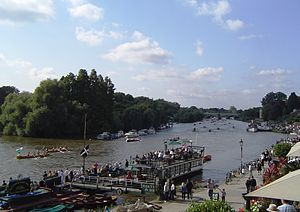 Corporation Island - Corporation Island and the Flowerpots beyond, from Richmond Bridge