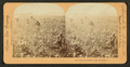 Cotton Plantation, Rome, Ga, from Robert N. Dennis collection of stereoscopic views.png