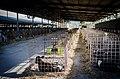 Cowshed nursery 2.jpg