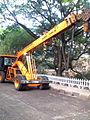 Crane .jpg