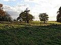 Croxton Park - geograph.org.uk - 608503.jpg