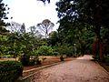 Cubbon Park1.jpg