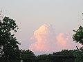 Cumulus congestus cloud - panoramio.jpg