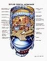 Cutaway View of Skylab Orbital Workshop 0101589.jpg