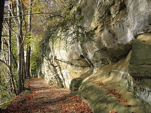 Molasse outcrop in the Aachtobel