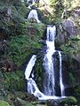 DE Triberg Wasserfall 20080830 005.jpg