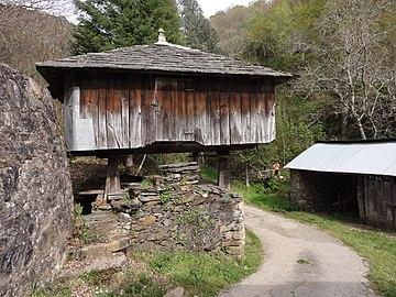 DSC06375 Fraga da Marronda, Alto Eo, Lugo, Galicia, hórreo de madera.jpg