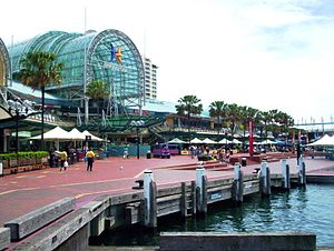 Darling harbour sydney showing harbourside