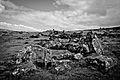 Dartmoor - Grimspound (6238862286).jpg