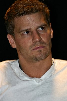 Angel alias David Boreanaz