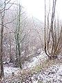 Deep valley below the railway - Feb 2012 - panoramio.jpg