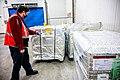 Delta delivers COVID-19 vaccine shipments (50733449888).jpg