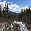 Denali National Park, Alaska (1).jpg