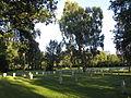 Denmark-Odense-Assistens Kirkegård-German graves.jpg