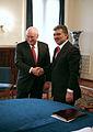 Dick Cheney and Abdullah Gül.jpg