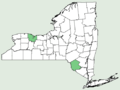 Digitalis lutea NY-dist-map.png