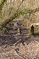 Dilapidated duck boards on public footpath - geograph.org.uk - 1757143.jpg