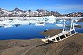Dog sled in Tasiilaq Greenland.jpg