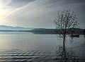 Dojran Lake 187.jpg